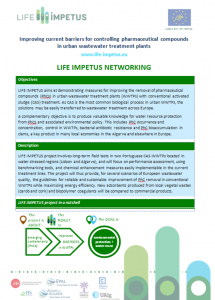 life-impetus-networking-sheet