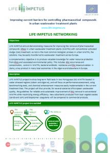 life-impetus-networking-sheet